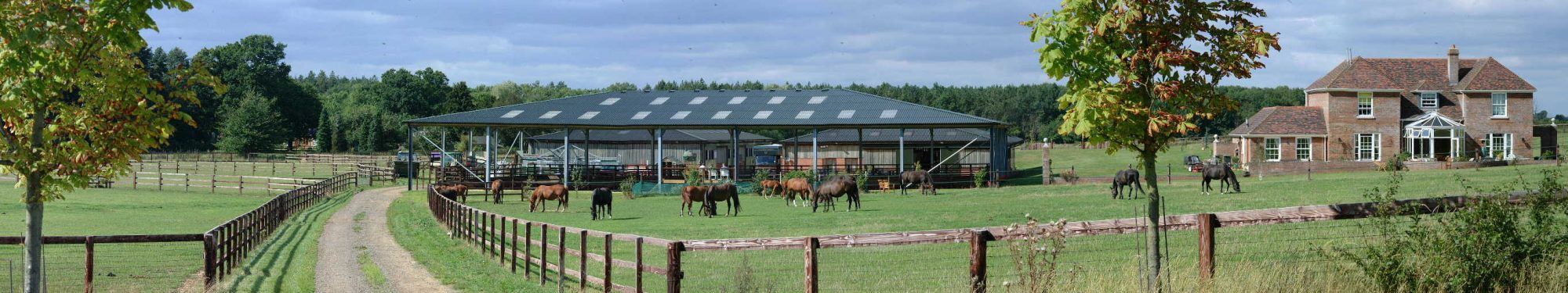 Livery at Holme Park Stud